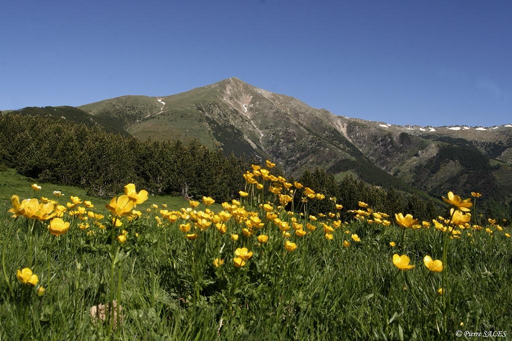 Conférence sur les enjeux de la biodiversité dans les réserves naturelles catalanes